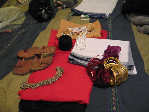 proto-rajasthani kit, with cat by you.
