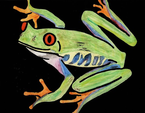 red-eyed tree frog (adjusted)
