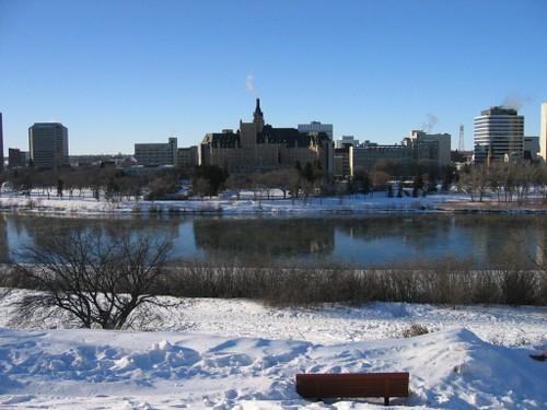 Frozen Saskatoon