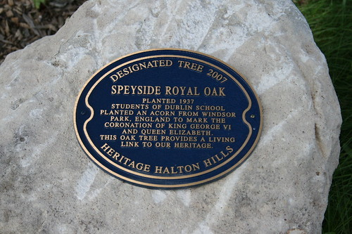 Plaque for Royal Oak at Speyside School