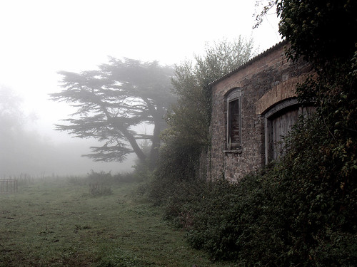 Misty Farm Building