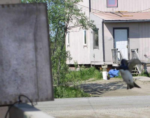 approachlanding0116.jpg
