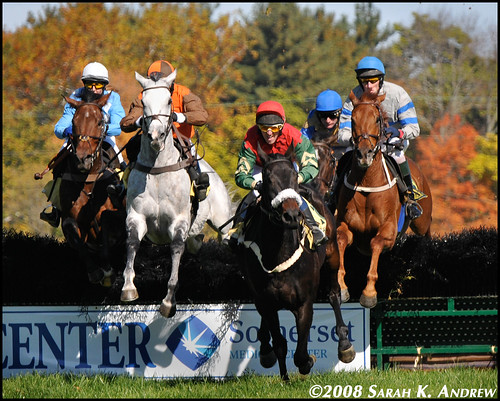Steeplechasing at Far Hills, NJ