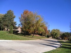 My street in the fall