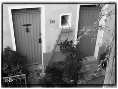 sollies-escalier2