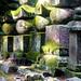 Gravestones - Okunoin cemetary