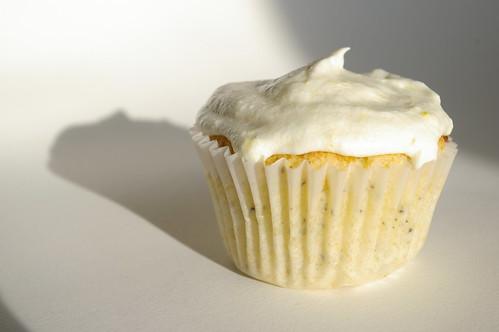 Solo cupcake