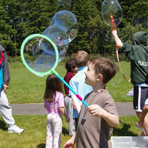 magnus bubbles