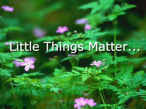 Little Things Matter