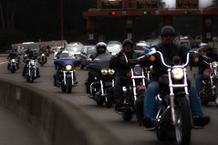 2749143120 efe54b499c m - What Gives States The Right To Mandate Use Of Motorcycle Helmets?