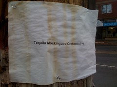 The Tequila Mockingbird Orchestra???