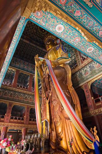 Statue de Bouddha en bois de santal du Yonghegong (celle du Hongrensi a été détruite par des soldats français lors de la révolte des Boxers) © Emile Bremmer