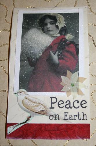 Peace on Earth Skinny Vaihto