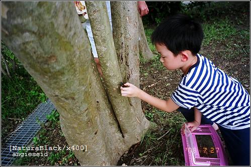 b-20080727_natura101_26.jpg