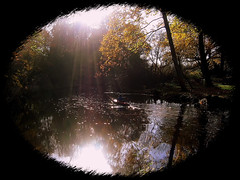 i_love_nature