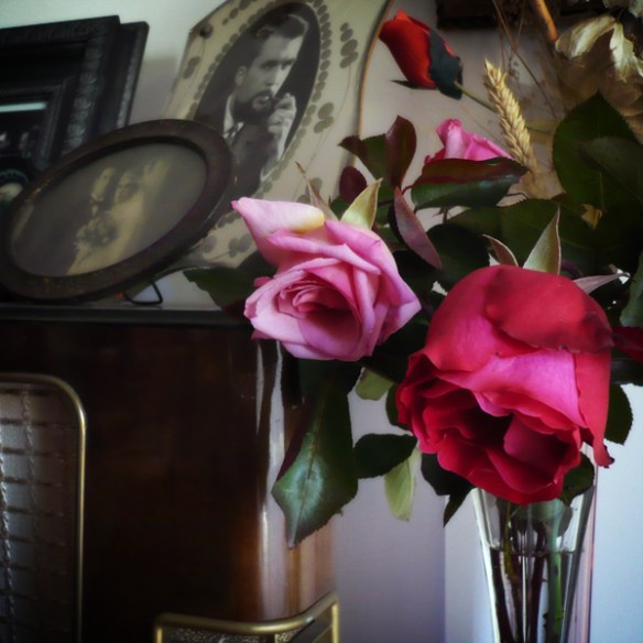 #156 - Roses