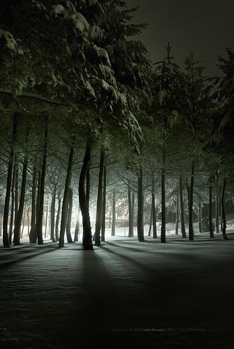frozen light in a snow weekend, MANZANEDA by Paulo Brandão.
