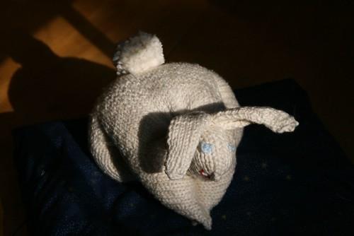 2008-09-22-bunny1