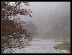 dovedale/fog