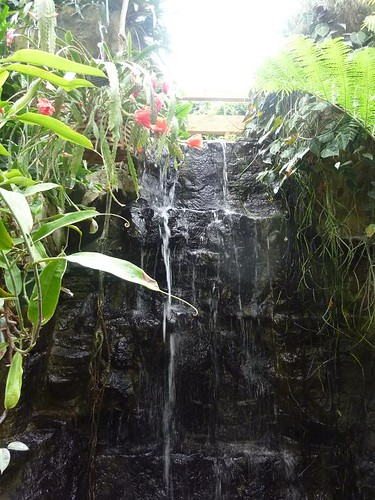WI, Madison - Botanical Gardens 13 - Waterfall