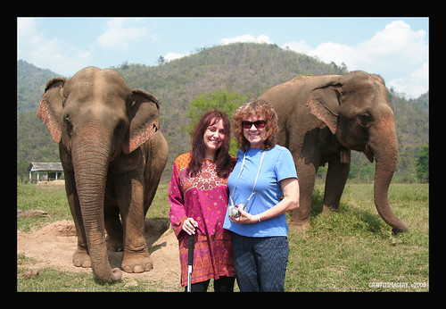 This is Mae Perm and Jokie....2 elephant best friends . Mae Perm takes care of blind Jokia. Just like my friend Diana who helps me when my eyes fail to see the bumps and obstacles along the way