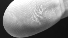 biometric birthday