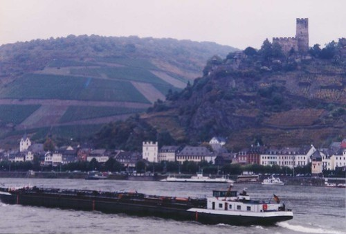 Loreley2
