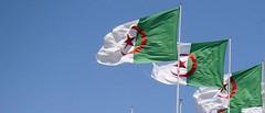 Algerian Flags