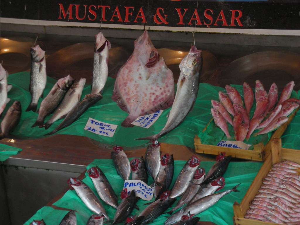 Fish Market in Istanbul