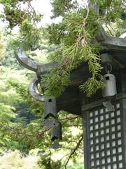 Kencho-ji, Kamakura