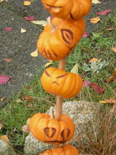 Mini pumpkin skewer close up