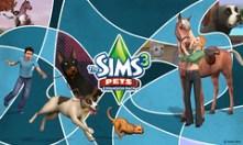 Pets03-1280x768