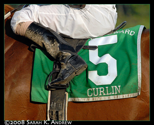 Curlin
