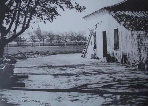 Huerta de Sementales