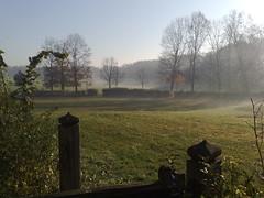 Parco di Monza stamattina