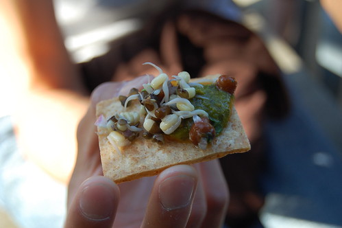 Sprouts and Chutneys on a Crunchy Flatbread