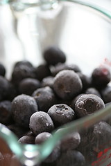 thawing blueberries