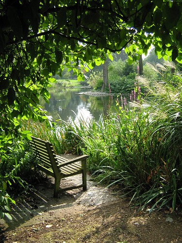 tranquil bench