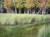 Otter Lake / Otter Creek