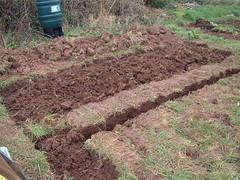 080217-digging168