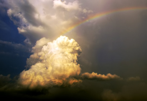 Rainbow Guard (by linh.ngân)