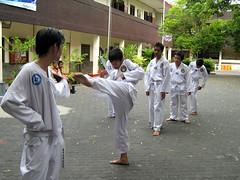 Taekwondo Santa Agnes