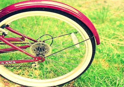 Back Wheel by Stephanie Megan