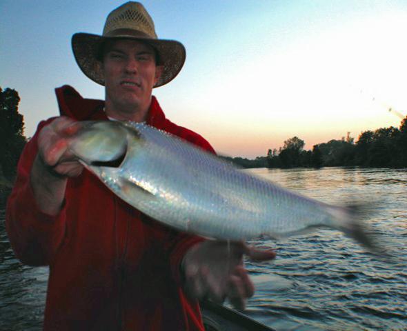 Fishing Bloopers: Shad Fumble!