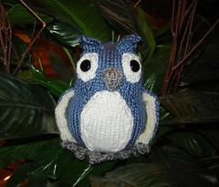 Lyssa's Owl