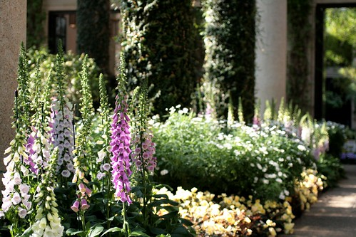 East Conservatory at Longwood Gardens