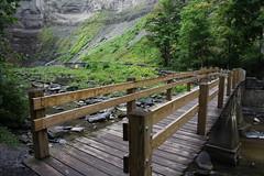 Footbridge at the Falls