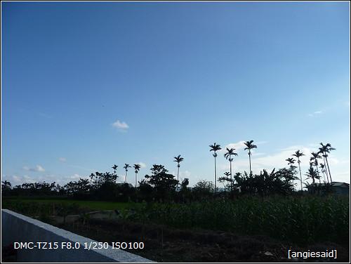 b-20090103_151149.jpg