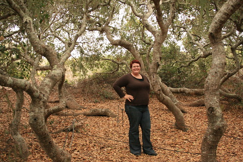 Me! in the Elfin Forest