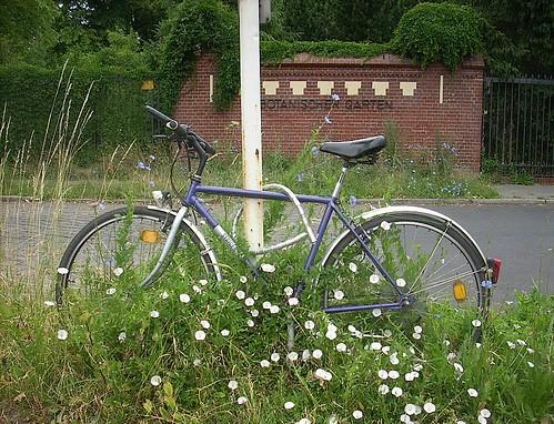 Vergessenes Fahrrad 1